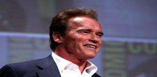 25 Inspirational Arnold Schwarzenegger Quotes On Success