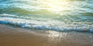 35 Beach Quotes On Success
