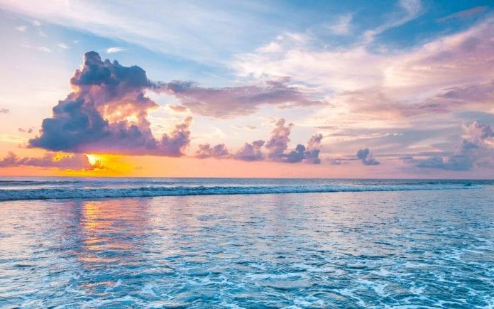 35 Inspirational Toni Morrison Quotes On Success